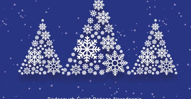 Radosnych Świąt Bożego Narodzenia życzy ENAMOR!